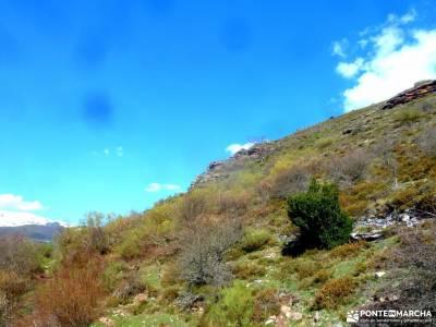 Alto Campoo;Parque Natural Saja-Besaya;viajes junio donde esta el parque nacional de cabañeros espa